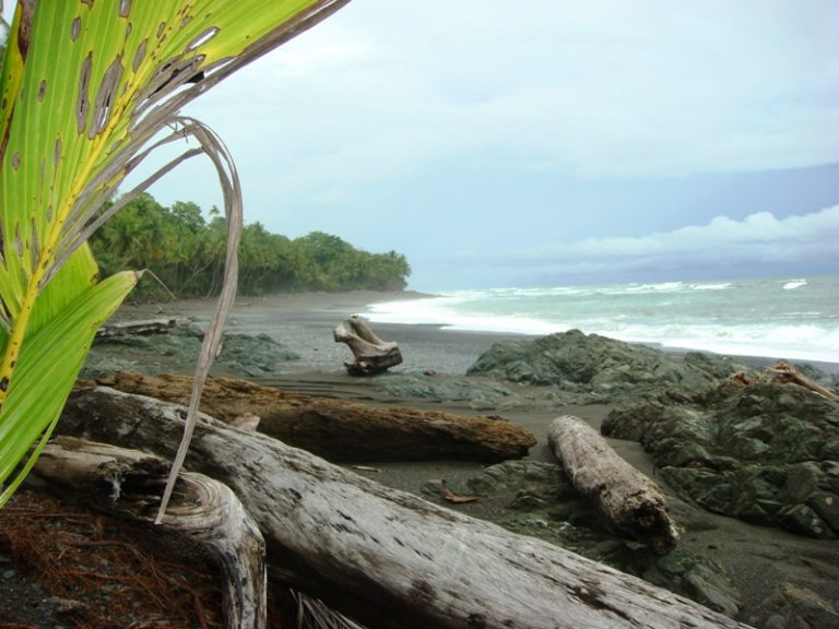 Pavones | Surfing Beaches in Costa Rica